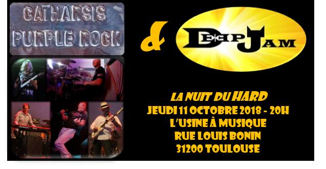 La Nuit Du Hard (rock… What Did You Expect?) @ TOULOUSE